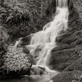 Waterfall, Drury Lane, Galloway, Scotland.